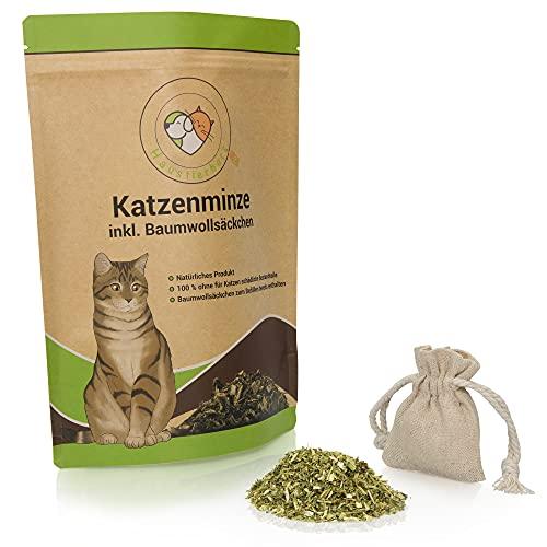 Haustierherz -  Xxl 60g Katzenminze