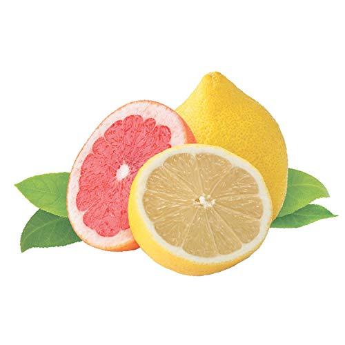 Purdoux PÜRDOUX 100% Cotton CPAP Mask Wipes with Grapefruit Lemon ...