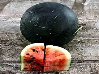 arkansas black watermelon