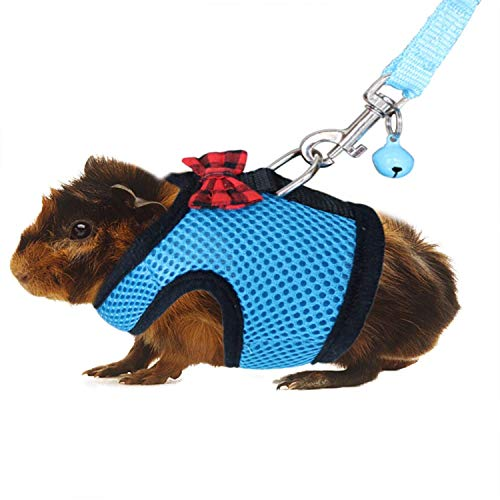 RYPET Guinea Pig Harness and Leash - Soft Mesh Small Pet Harness with Safe Bell, No Pull Comfort Padded Vest for Guinea Pigs, Ferret, Chinchilla and Similar Small Animals