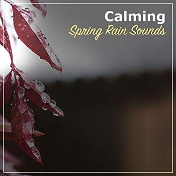 #21 Calming Spring Rain Sounds