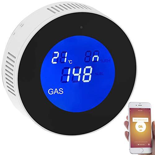 VisorTech Gaswarner: WLAN-Multi-Gasmelder für haushaltsübliche Gase, mit App & Sprachansage (Gasalarm)