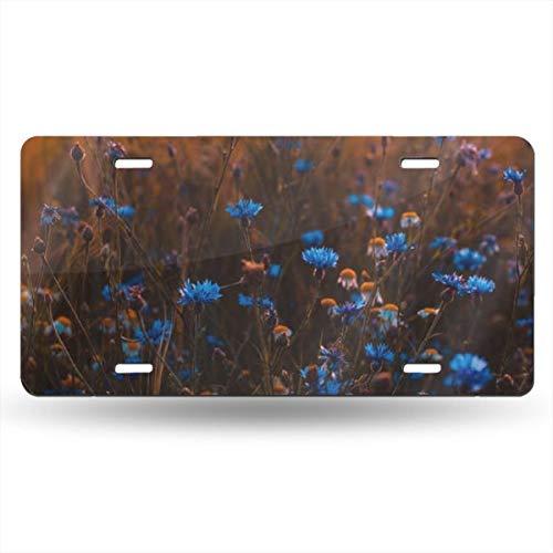 Doinh Nummernschild, Motiv Flowers On The Grassland, personalisierbar, einseitiger Druck, rechteckig, Aluminium, 30,5 x 15,2 cm