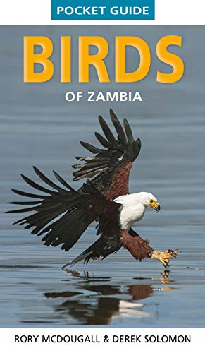 Pocket Guide Birds of Zambia (Pocket Guides) (English Edition)