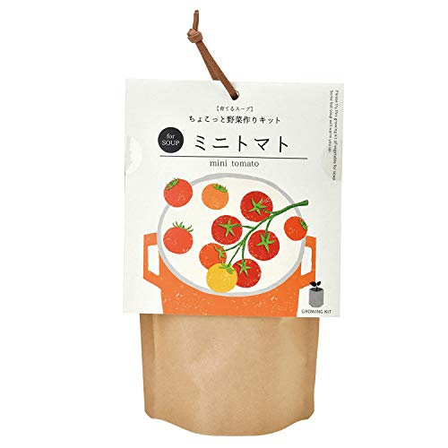 聖新陶芸 栽培キット 育てるスープ ミニトマト GD-79505 茶色