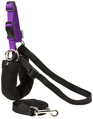 Ancol/Pure Dog Listeners - Stop Pulling Dog Training Harness & Lead Set - Medium Size 4-6 (inc DVD)