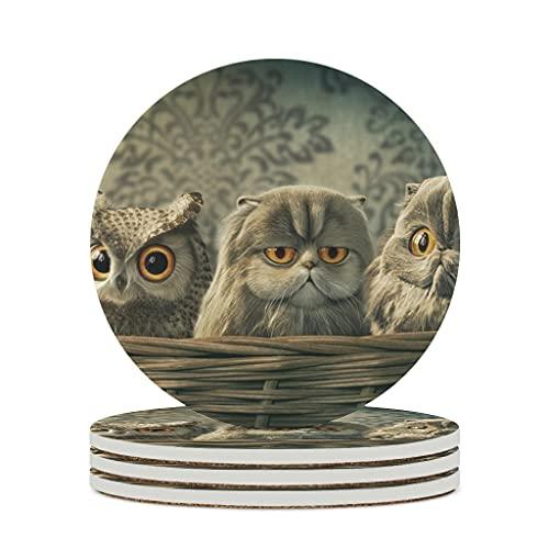 Facbalaign Posavasos de cerámica con diseño de búhos, base de corcho resistente a los arañazos, olor neutro, 4 unidades, color blanco
