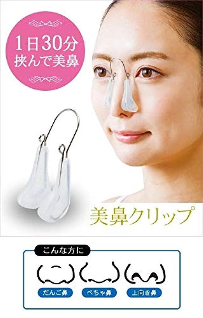 何十人もリズム掃除美鼻クリップ