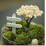 BYFRI 1pc Miniatur-Holz-Zaun Wegweisers Craft Gartendeko Micro Landschaftsgarten-Dekoration Fence Feegarten Miniatures Weiß