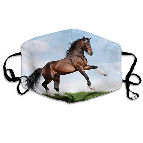 Bequeme Winddichte Maske, Pferde, Bay Horse Pacing On The Grass Energetisch Edler Charakter des Naturkonzepts, Blau Grün Braun