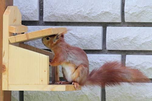 Komplett zusammengebaut; Massives, stabiles Eichhörnchen Futterhaus Futterstation Made in Germany (Bayrischer Wald), aus bayerischem Fichtenholz,hochwertig verschraubt und wasserfest verklebt