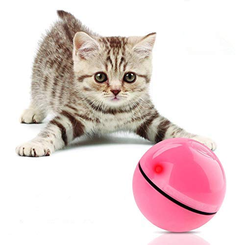 Bojafa Cat Toys Interactive for Indoor Cats Kittens Training, Smart Kitten...