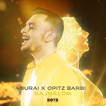 Sajnálom (feat. Opitz Barbi)