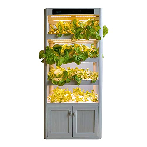 GQTYBZ MáQuina Cultivo de Hortalizas, Sistema de Cultivo Hidropónico Inteligente para El Hogar Sistema de Cultivo Hidropónico Sin Suelo Automatización de la Caja de Plantas Estante Multicapa