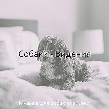 Собаки - Видения