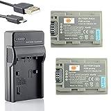 Cargador de red de plomo AC-L200 Para Sony HDR-CX105E HDR-CX106E HDR-CX110E HDR-CX115E