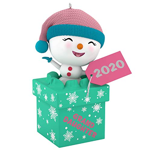 Hallmark Keepsake Christmas Ornament 2020 Year-Dated, The Gift of...