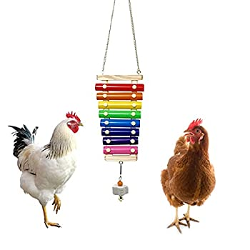 Vehomy Chicken Xylophone Toy for Hens Suspensible Wood Xylophone Toy with 8 Metal Keys Chicken Coop Pecking Toy with Grinding Stone  Rainbow Color