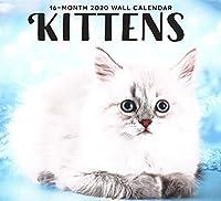 2020 子猫 フルサイズ 壁カレンダー 16か月