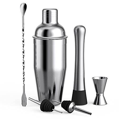 Romellar Juego de coctelera de acero inoxidable de 6 piezas, juego de coctelera más esencial, juego de herramientas de barra de coctelera Boston para el hogar y la barra