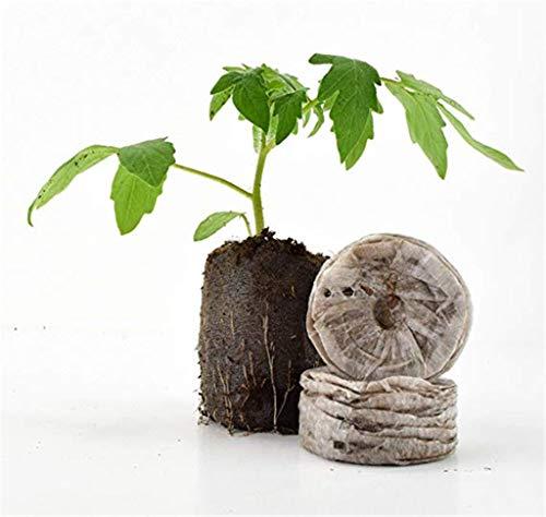 Votono 50pcs Peat Pellets for Seeds Germination Seeds Starting Fiber Soil Direct Plant Seed Starters 30mm