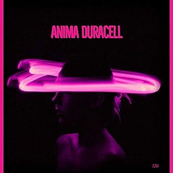 Anima Duracell