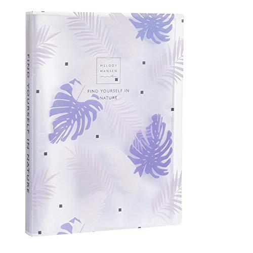 Inyear Archivador A4 multicapa con clip de plástico, 23 x 31 cm, 60 páginas, color verde