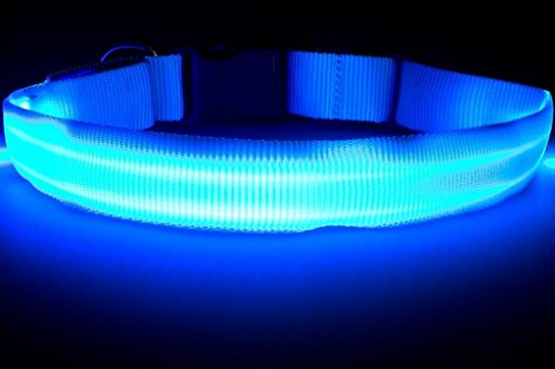 Great-Dealz LED dog Collar to Keep Your Dog Safe