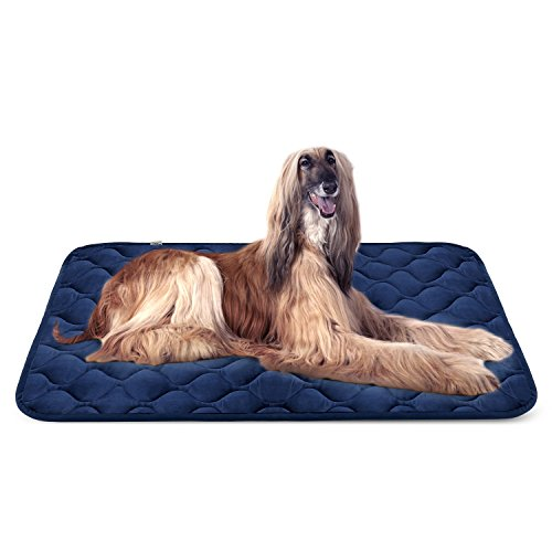 dog kennel truck bed - 7