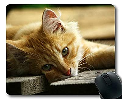 Yanteng Estera del ratón, Gato del Gato del Animal doméstico de la Mirada Fija 190103-010 por Yanteng