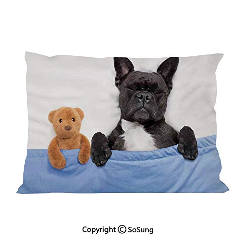 "Animal Decor Bed Pillow Case/Shams Set of 2,French Bulldog Sleeping with Teddy Bear in Cozy Bed Best Friends Fun Dreams Image King Size Without Insert (2 Pack Pillowcase 36""x20""),Multi"