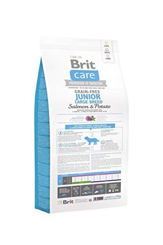 Brit Care Junior Large Salmon & Potato getreidefrei Hundefutter für Welpen, 12 kg