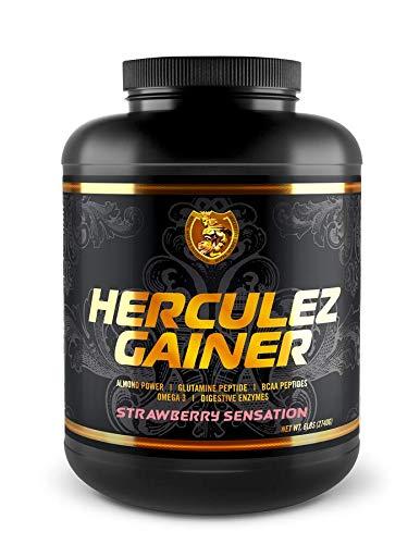 RSN Herculez Gainer Protein Powder | 508 Calories | 40g Protein | Gain Strength & Size Quickly | Tastes Delicious | 6 lbs | Strawberry Sensation