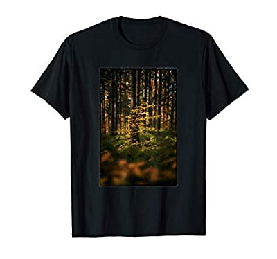 Spotlight of the Forest, Fall Color, Pretty, Tree, Photo T-Shirt