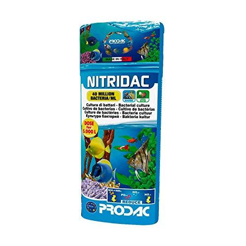 Prodac NITRIDAC ATTIVATORE BATTERICO per Filtro Biologico Acquario Dolce Marino 250 ML