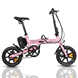 ECOTRIC Portable Electric City Bike