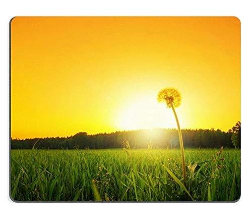 Mausunterlage Einsamer Löwenzahn auf Einer Rasenfläche an der niedrigen Winkel-Matte des Sonnenunterganges Kundengebundene Tischplattenlaptop-Spiel-Mausunterlage