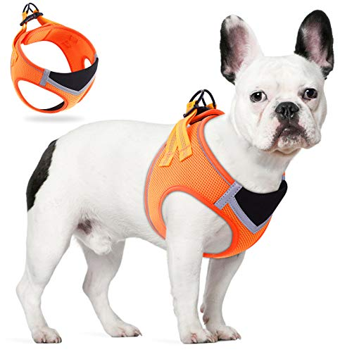 TAMOWA Hundegeschirr Hunde Welpe Hundegeschirr Anti Zug Atmungsaktiv Mesh Brustgeschirr No Pull Sicherheitsgeschirr Reflektierend Einstellbar Weich für Mittlere und Kleine Hunde, Orange, S