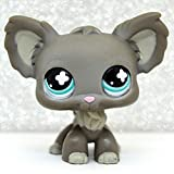 Small Pet Shop Grey Chihuahua Dog Puppy Blue Eyes Animal Toy LPS