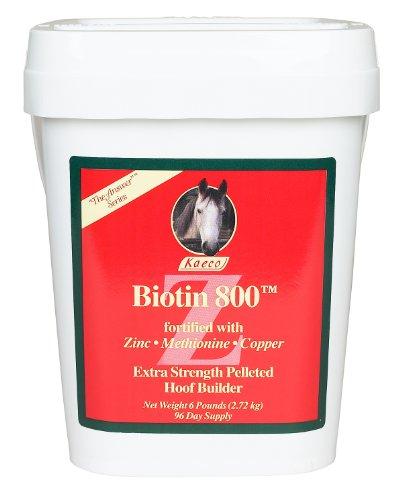 Biotin 800 Z - 6lbs