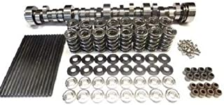 Brian Tooley BTR LS3 Stage 4 Naturally Aspirated Cam Camshaft with Spring Kit and Chromoly 7.400 Pushrods (Camshaft+Spring Set)