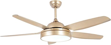 Amazon Com Tropicalfan Gold Ceiling Fan With Light Champagne Chandelier Fan Copper Electrical Fan With 5 Abs Blades For Indoor Room Bedroom Golden Finish Kitchen Dining