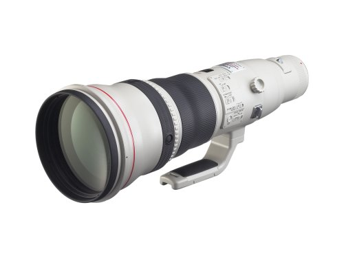 Canon EF 800mm f/5.6L IS USM Super Telephoto Lens for Canon Digital SLR Cameras