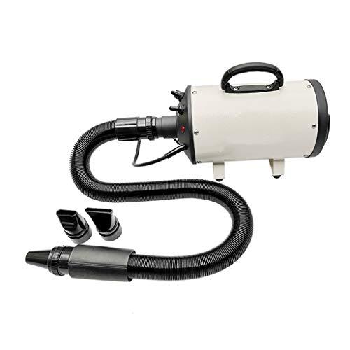 Jlxl Pet Secador De Pelo Para Mascotas Perros, 2200W Profesional Low Noise Perros Cuidado Secador Calor Ajustable Y Velocidad (Color : White)