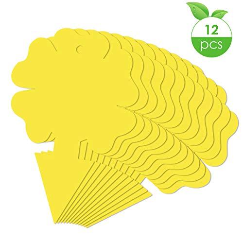 Tianhaik gele kleverige vliegenval vliegenvanger Stickers tweezijdige insectenplakbord voor bladmijners witte vliegen 15X10cm Bloem