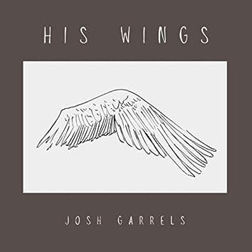 His Wings