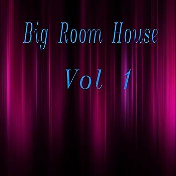 Big Room House, Vol. 1
