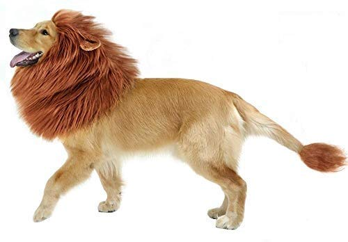 GABOSS Lion Mane Costume for Dog, Dog Lion Wig for Dog Large Pet Festival Party Fancy Hair Dog...