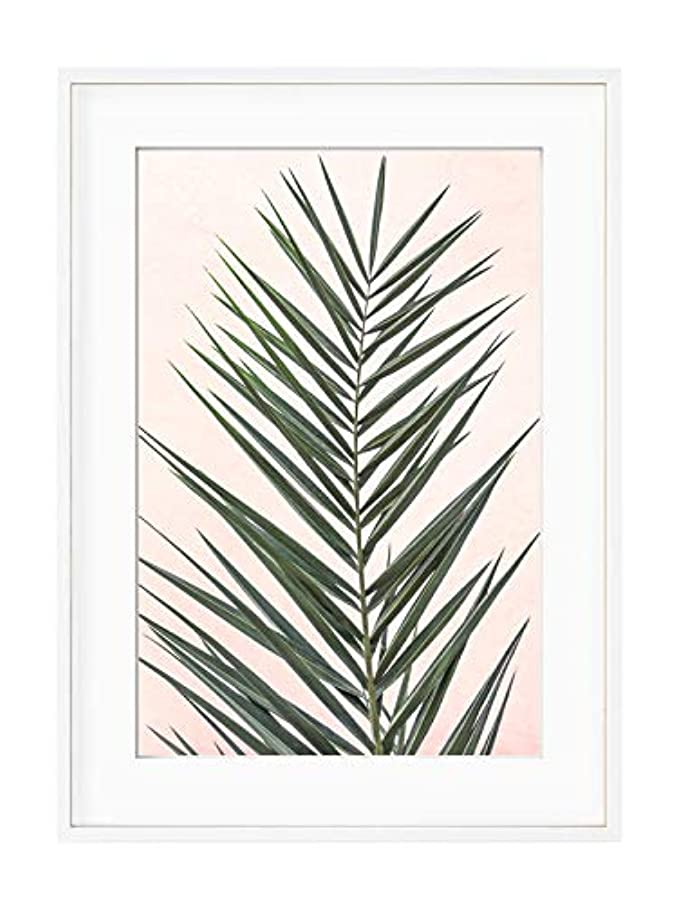 Palm on Pink Background with White Varnished Wood Frame and Mount, Multicolored, 40x50