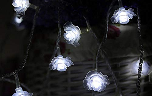 QGXDT LED Outdoor/Indoor String Lights - 10m 100 Waterproof Plug in String Lights Outdoor Decorative String Lights for Backyard Bistro Porch Garden Cafe